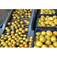 China Apple Orange Juice Extractor Aseptic Big Bag Package Turn Key Projects wholesale