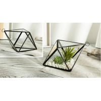 China Geometric Micro Stereoscopic Landscape Glass Hanging Planters / Copper Glass Planter Box on sale