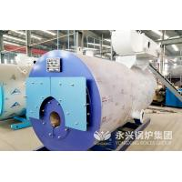China 30 Liter Gas Fired Hot Water Boiler Residental Low Pressure Steam Boiler wholesale
