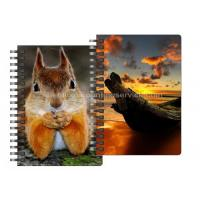 China 0.6mm Thickness Plastic Cover Spiral 3D Lenticular Notebook 80 Pages A4/A5/A6 Size wholesale