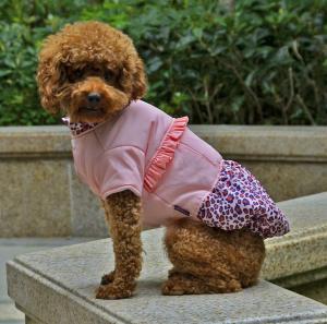 China Winter jacket dog clothes wholesale
