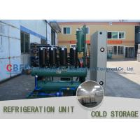 China Ice Cooling Freezer Cold Room America Copeland Compressor Condensing Unit 100MM Panel wholesale