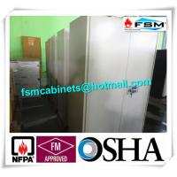 Quality Metal Fireproof Storage Cabinets With 2 Door For Large File / Documents for sale