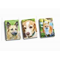 China Customize A4 / A5 / A6 3D Spiral Flip Notebook Lenticular Flip For School Student wholesale