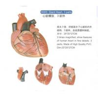 Buy cheap Giant Heart from wholesalers