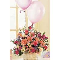 China Birthday Balloon Basket wholesale