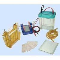 China Electrophoresis cell wholesale