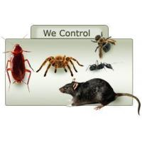 China Pest Control Bangalore - Varna Enterprises, India wholesale