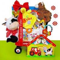 China Baby Einstein Day on the Farm Baby Gift Basket wholesale