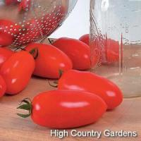 China Heirloom San Marzano Tomato on sale