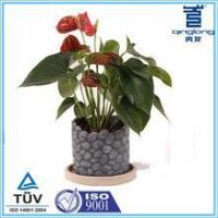 Buy cheap Round 6 inch Nearly Natural cement decoration pot from wholesalers