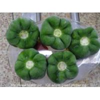 China IQF Frozen Vegetables IQF bell pepper whole wholesale