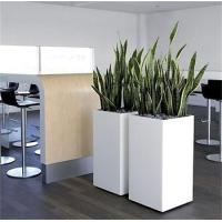 China Fiberglass square tall white outdoor planters sets wholesale