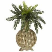 China Cycas with Decorative Vase Silk Plant wholesale