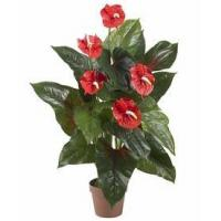 China 3' Anthurium Silk Plant (Real Touch) wholesale