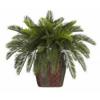 China Double Cycas with Vase Silk Plant wholesale