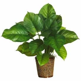 "Quality 29"" Large Leaf Philodendron Silk Plant (Real Touch) for sale"