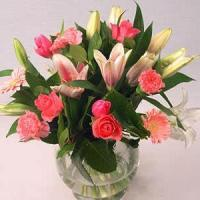 Buy cheap Pink Beauty NO.70 deliver flower to shanghai from wholesalers