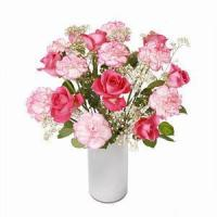 Buy cheap Rose and Carnation NO.14 deliver flower to shanghai from wholesalers