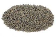 China Puy Type Lentils on sale