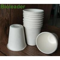 China Bowl & Cup Sugarcane Bagasse Cup-8oz wholesale
