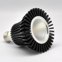 Buy cheap LED COB COB 12W PAR30 Model No.: COB LED SPOT from wholesalers