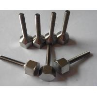 China Custom Titanium Hex Bolt And Nut wholesale