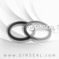 China Viton PTFE EPDM NBR Rubber O Ring or Stainless Steel 304 316 Monel Metal O Ring wholesale
