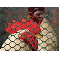 Buy cheap Hexagonal Plastic Poultry Fence - Cage or Barrier for Poultry from wholesalers