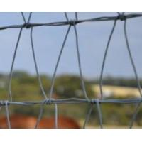 China The right Field Fence you need for horse, deer and sheep on sale