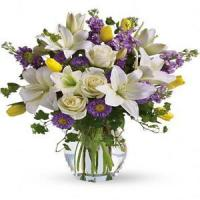 China Mother's Day Spring Waltz.No.103 delivery flower to australia sydney wholesale