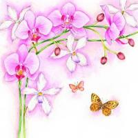 China S318 Orchids (for 6 cards) wholesale