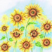 China S307 Sunflowers (for 6 cards) wholesale