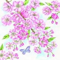China S314 Cherry Blossom (for 6 cards) wholesale