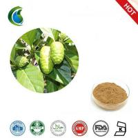 China 100% Natural Noni Fruit Extract With Morinda Citrifolia wholesale