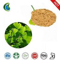 China High Quality Gingko Biloba Extract Powder wholesale