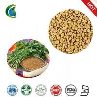 China Medicinal Testofen Fenugreek Trigonella Foenum-Graecum Seeds Extract Powder wholesale