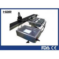 China HAE - 1900 Multi Language DOD Inkjet Printer , High Resolution Online Expiry Date Printer wholesale