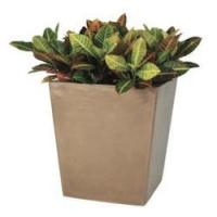 China Fiberglass Planters Armstrong Fiberglass Planter wholesale