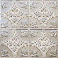 Quality 2X2 Bare Steel Clng Tile, S309 2 for sale