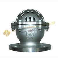 China Cast Iron Foot valves wholesale
