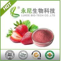 Top Quality Strawberry Fruit Flavour Powder