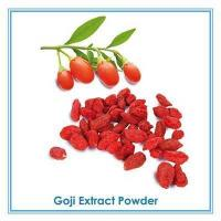 China Barbury Wolfberry Fruit P.E. Goji Berry Extract wholesale