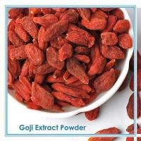 China Polysaccharides 10-50% Wolfberry Extract Goji Berry Extract/ wholesale