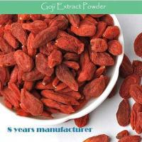 China GMP factory supply best popular high quality Wolfberry fruit Extract wholesale