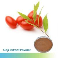 China 100% Pure Polysaccharide goji berry extract | Wolfberry Extract wholesale