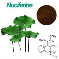 wholesale Lotus Leaf p.e Nuciferine 4%