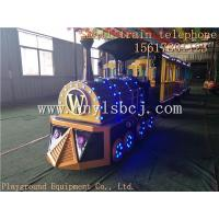 Foreign customers custom models sightseeing train