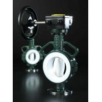 Butterfly Valve RBV060 Series PTFE Lined Wafer Resilient Seated Butterfly Valve