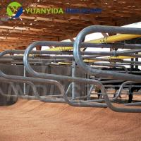 China Dairy Cow Stall Equipment wholesale